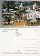 Zoosafari Di Fasano - - Autres