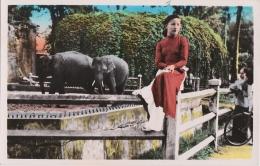 Cpa SUD VIETNAM - SAIGON - Le Parc Aux Eléphants - Vietnam