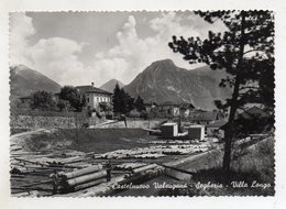 Castelnuovo Valsugana (Trento) - Segheria - Villa Longo - Viaggiata Nel 1954 - (FDC10711) - Trento