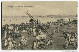 Libyen - Bengasi - Il Mercato Del Bestiame - Libyen