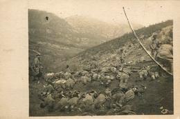 Albanie - Vue Des Morts Du Bataillon à L'Attaque Du Piton Le 18 Mars 1917 - Albania WW1 Guerre 1914 1918 - AA20 - Albanie