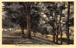 """MARCHE-en-FAMENNE - L'allée Des Vieux Tilleuls, Du """"Monument"""" - Marche-en-Famenne"""