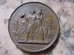 1859 PREMIAZIONE IST. INCORAGGIAMENTO NAPOLI RICCIARDI N. 240 MM- 45 AE - MOLTO RARA - - Royal/Of Nobility