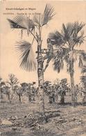 ¤¤  -  BURKINA FASO   -  BANFORA   -  Récolte Du Vin De Palme   -  ¤¤ - Burkina Faso