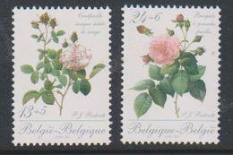 Belgie 1988 Rozen / Roses  2w  ** Mnh (39666) @ Face Value - Belgium