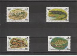 Gambie 1981 Série Reptiles WWF 431-34** MNH - Gambie (1965-...)