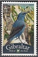 Gibilterra Bird Of The Rock Passero Solitario Monticola Solitarius Used Gibraltar - Sparrows