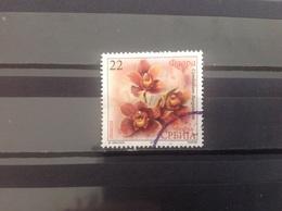 Servië / Serbia - Orchideeën (22) 2013 - Servië