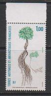 TAAF 1992 Plants / Colobanthus Kerguelensis 1v ** Mnh (39371D) - Tierras Australes Y Antárticas Francesas (TAAF)
