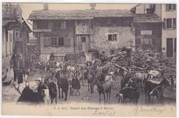 Suisse - Départ Des Chèvres à Salvan - Switzerland