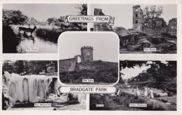AM53 Bradgate Park - 1960's RPPC Multiview - Postage Due - England