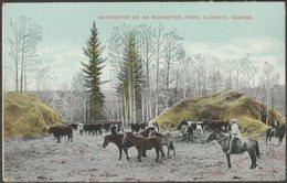 Midwinter On An Edmonton Farm, Alberta, C.1905-10 - Postcard - Edmonton