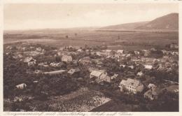 AK - NÖ - Langenzersdorf - Panorama - 1920 - Korneuburg