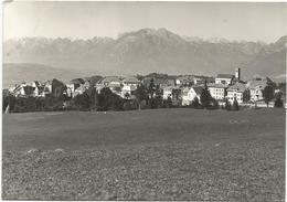 X3506 Spert D'Alpago (Belluno) - Panorama / Viaggiata 1960 - Altre Città