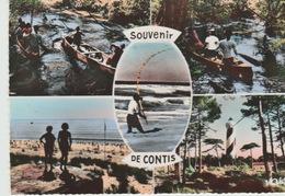 SOUVENIR  DE  CONTIS- Dos :  Divisé  CPSM - Circulé : Oui - Année :1959 - Editeur : RENÉ Numéro 582  FRAIS : 1.00 BIEN - France