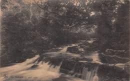 LA HOÊGNE - Le Vieux Chêne - Pepinster