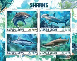 Sierra Leone 2018    Sharks S201806 - Sierra Leone (1961-...)