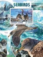 Sierra Leone 2018   Sea Birds  S201806 - Sierra Leone (1961-...)