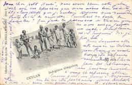 CEYLAN.- INDIGENES CINGALAIS - Asia