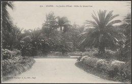 Allée Du Grande Lac, Le Jardin D'Essai, Alger, C.1910 - Régence CPA - Algiers