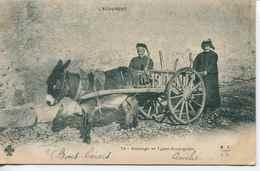 13824 -  Auvergne -  ATTELAGE  Et  TYPES  AUVERGNATS  -  GROS PLAN  - Circulée Avant 1904 Dos Non Séparé - France