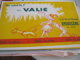 BUVARD PUBBLICITARIA VALIE - Buvards, Protège-cahiers Illustrés