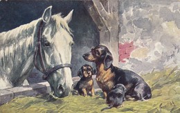 Dackel Teckel Dachshund  Horse Chien K.Feiertag  Cpa. Old Dog Postcard. BKWI. 152-1 - Chiens