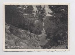 MONT DE L'ENCLUS - L' Enfer - Kluisberg - De Hel - Mont-de-l'Enclus