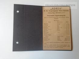 DC48.2  Timetable  ADRIA  Hungarian Royal Ship Company  1909  -FIUME Harbour Croatia - Europa