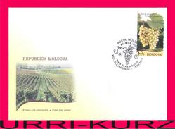 MOLDOVA 2013 Nature Flora Fruits Grapes Fruit Grape Muscat Vineyards Winemaking Mi849 Sc804 FDC - Agriculture