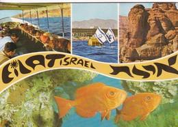 EILAT ISRAEL. PALPHOT. CIRCULEE TO BUENOS AIRES CIRCA 1978- BLEUP - Israël