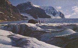 004705  Snowmobile On Athabasca Glacier, Columbia Icefields, Jasper National Park - Alberta