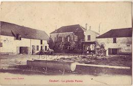 77 COUBERT La Grande Ferme - France