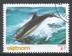 Viet Nam Democratic Republic 1985. Scott #1572 (U) Whale, Delphinus * - Viêt-Nam