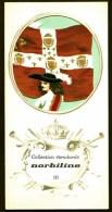 COLLECTION ÉTENDARDS- DRAPEAUX- RÉGIMENT DE NAVARE- ENSEIGNE EN 1675-  PUB NORBILINE AU VERSO- 3 SCANS - Flags