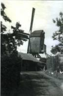 STEKENE (O.Vl.) - Molen/moulin - De Gewezen Fonteinemolen Met Volle Zeilen In Werking Omstreeks 1930 - Stekene