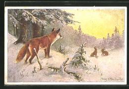 CPA Illustrateur Ing. V. Anderle: Fuchs Beobachtet Hasen - Animals