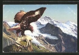 CPA Falke Avec Totem Hasen Auf Einem Berg - Birds