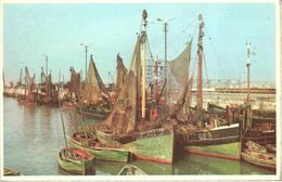 Côte Belge - Bateaux Au Port - Boten In Haven - België