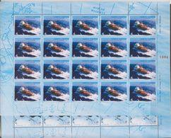 Argentina 1996 Antarctica 2v In 2 Sheetlets  ** Mnh (F7237) - Zonder Classificatie