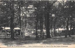 77 - Forêt De Fontainebleau - Chalet-Rafraîchissement Du Point-de-Vue Des Gorges D'Apremont - Fontainebleau