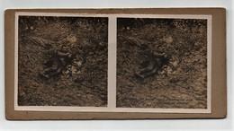 Ancienne CARTE Vue Stéréoscopique Guerre 1914-18 Verdun Un Boche Mort A Conservé Une Attitude De Vivant - Fotos Estereoscópicas