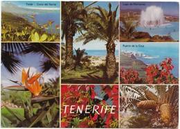 TENERIFE, Spain, Multi View, Used Postcard [21529] - Tenerife