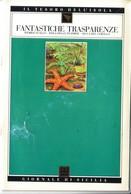 GdS 22.FANTASTICHE TRASPARENZE(sferracavallo-isola Delle Femmine-secca Del Corallo). - Libri, Riviste, Fumetti