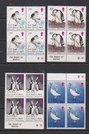 South Georgia 1996 Chinstrap Penguins 4v Bl Of 4  ** Mnh (39707) - Zuid-Georgia