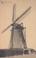 Bree Molen Moulin Mill - Bree