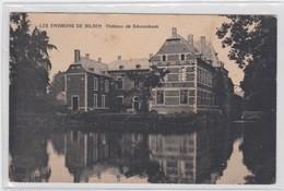 BILZEN-BEVERST-LES ENVIRONS DE BILSEN-CHATEAU DE SCHOONBEEK-KASTEEL-RARE-VERZONDEN NAAR GELINDEN-1910-ZIE DE 2 SCANS - Bilzen