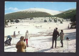CPSM 84 - MONT-SEREIN - MONT VENTOUX - Sport D'hiver Au Mont Serein TB PLAN Skieurs ANIMATION 1970 FLAMME MALAUCENE - France