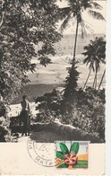 ILES WALLIS-FUTUNA 385H - Wallis Et Futuna