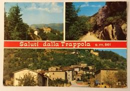 SALUTI DALLA TRAPPOLA VEDUTE - VIAGGIATA FG - Arezzo